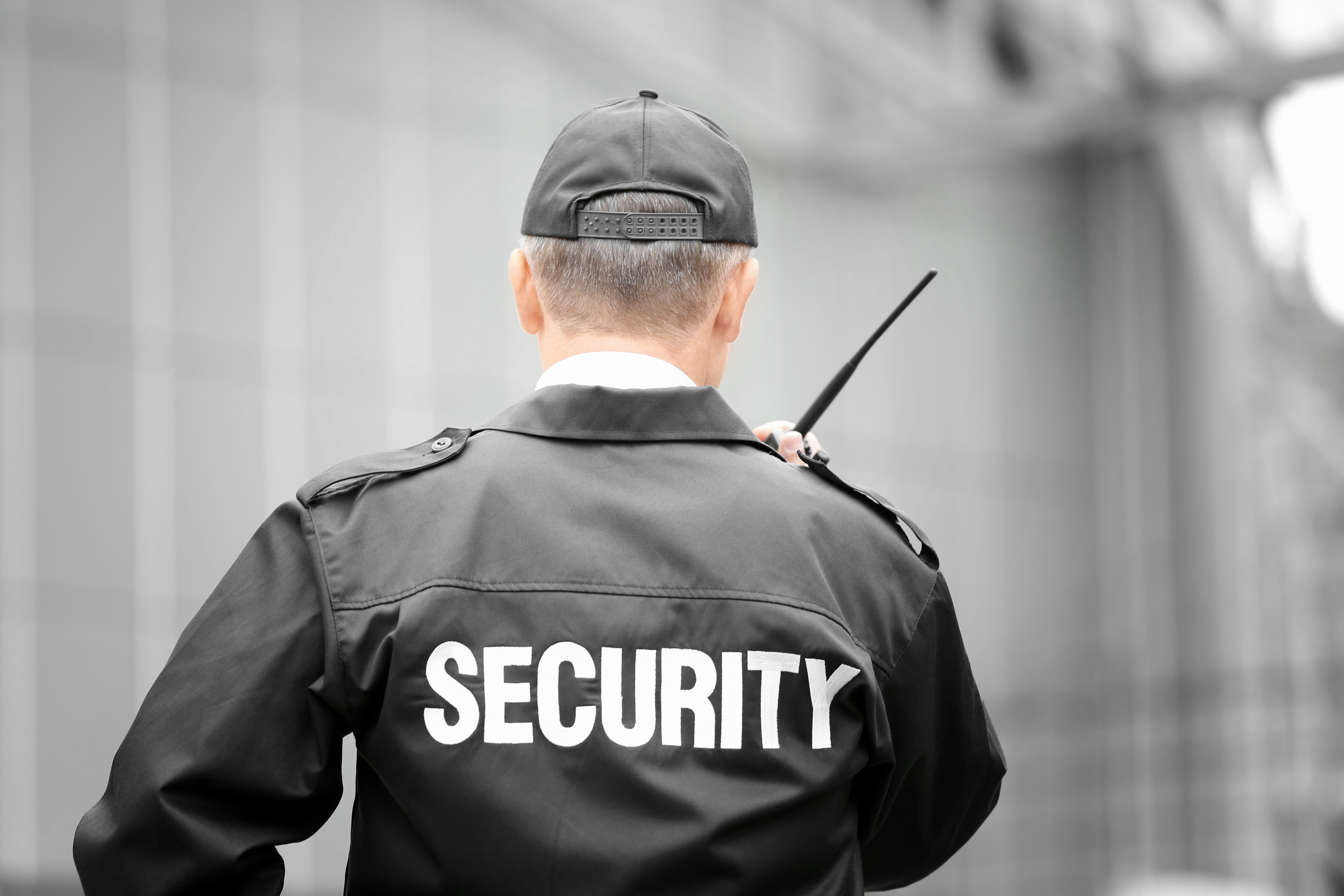 Event Security, Party, Celebration, Secure, Protection